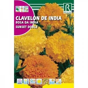 CLAVELON DE INDIA SUNSET DOBLE SEMILLAS