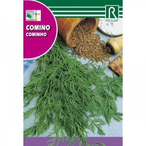 COMINO (CUMINUM CYMINUM) SEMILLA