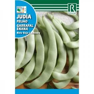 Green basics trough saucer 60cm  leaf green